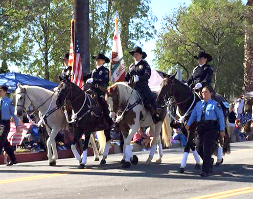 Mounted-Parade-Pic