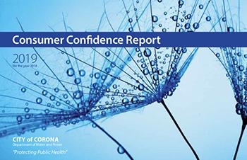 Consumer Confidence Report 2019